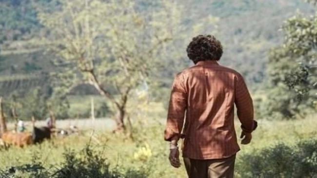 Netizen Reveals Allu Arjun's Pushpa Plot: Read Sukumar Film Story NOW