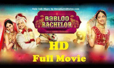 Babloo Bachelor Full Movie Download HD 720p Filmyzilla, Filmywap